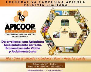apicoop